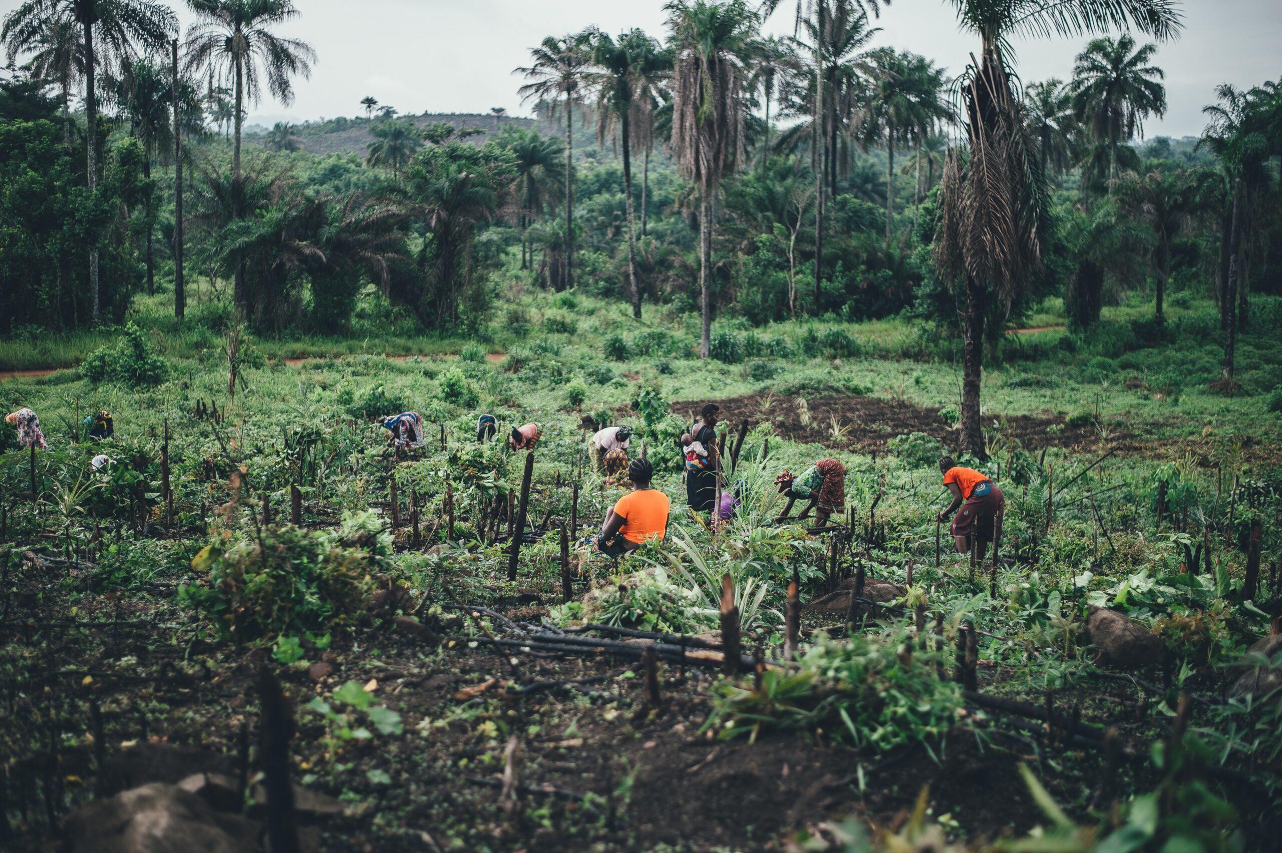 El fortalecimiento de la mujer rural desde el comercio justo