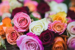 exportación de flores