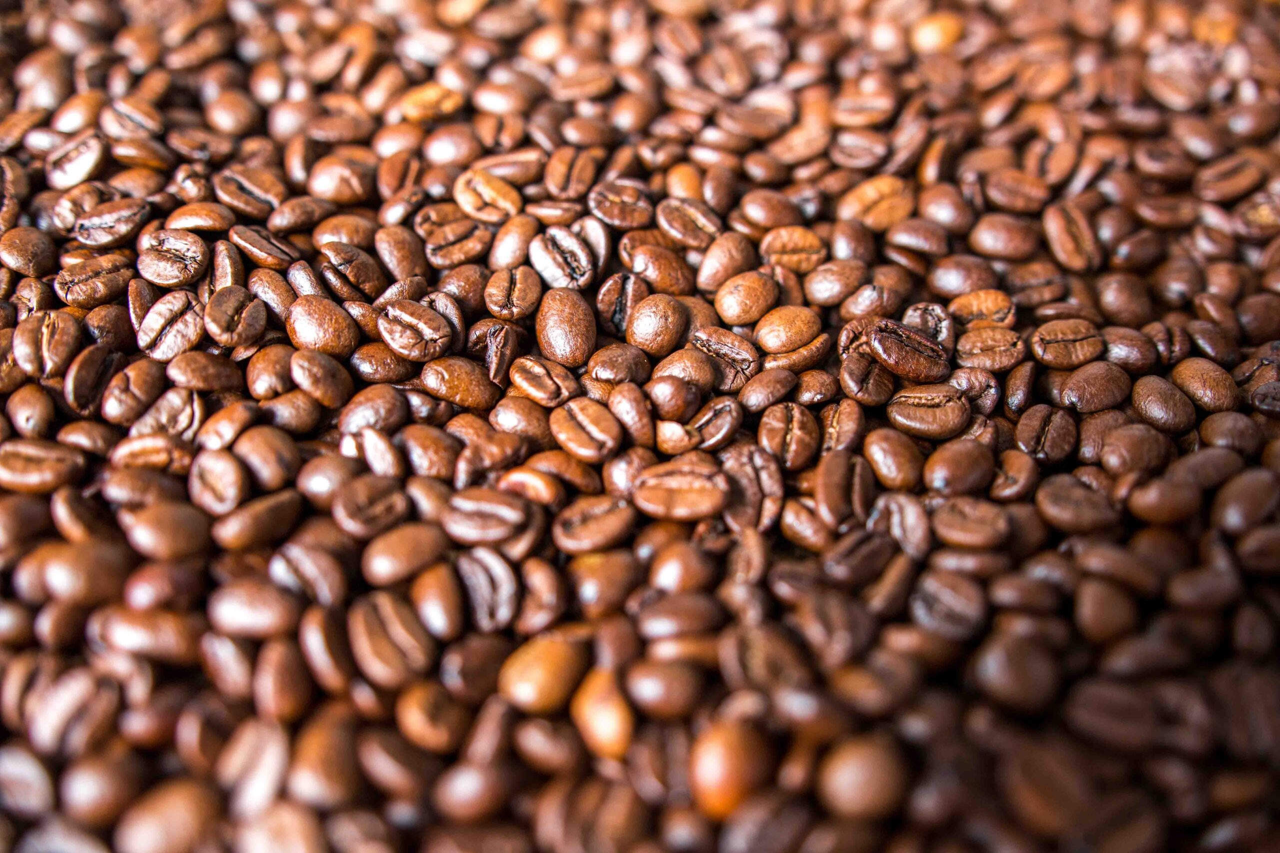 Países productores de café, panorama y paisaje de una crisis