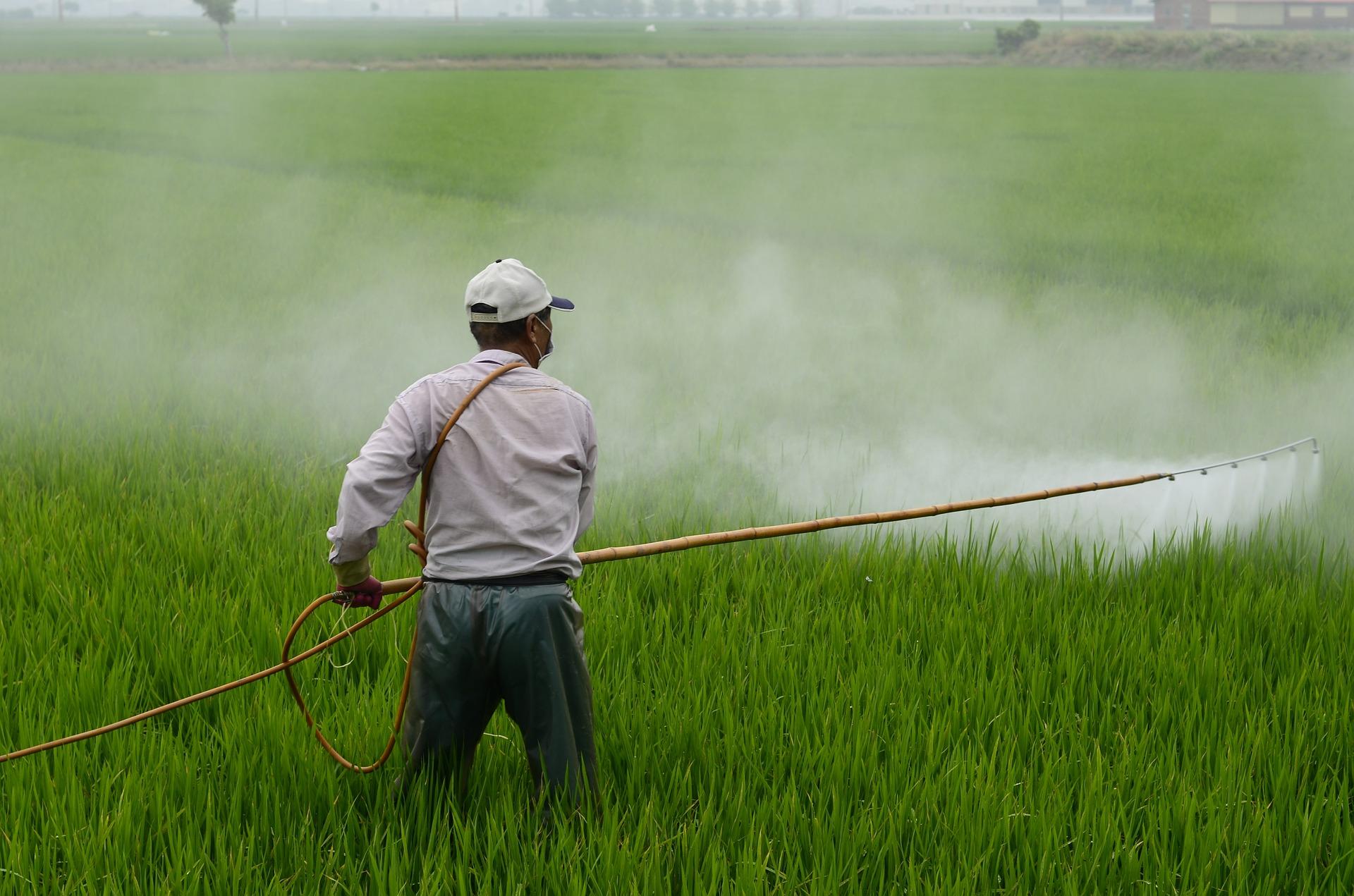 La industria de herbicidas trabaja en alternativas al glifosato