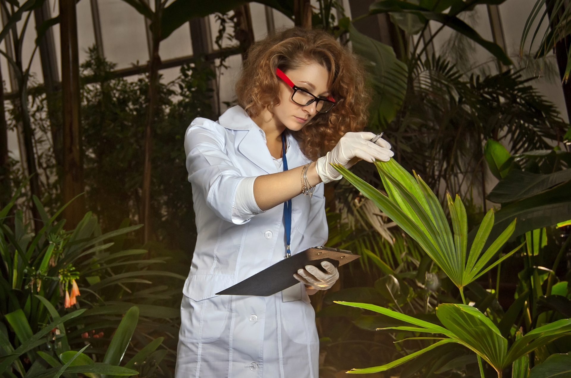 Durante El Primer Semestre De 2020 Ingresaron 45 Mil Toneladas De Agroquímicos A Colombia, Superando Los US$ 254 Millones